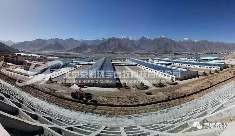 betway88体育官网环宇畜牧西藏嘎巴生态牧场项目顺利竣工,传送带智能饲喂系统、牛床垫料再生系统、牛场光伏发电系统第一次走上3000米高原